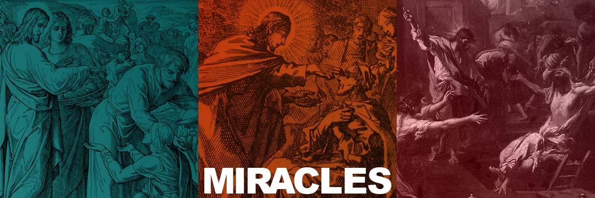 Day 107  Jesus Raises Lazarus From the Dead  David Servant