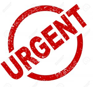 Urgent help needed please!?